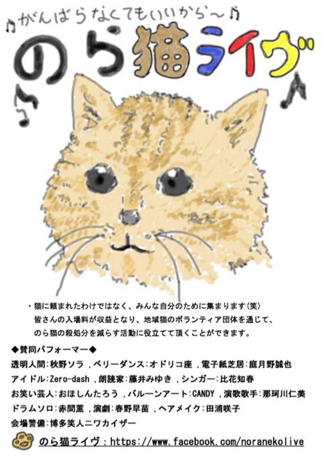 のら猫ライブ