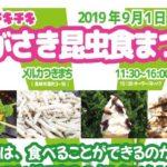 2019年9月1日(日)に長崎県長崎市のメルカつきまちで「第1回チキチキながさき昆虫食まつり」が開催されます。